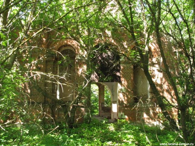 Вокруг храма непроходимые заросли