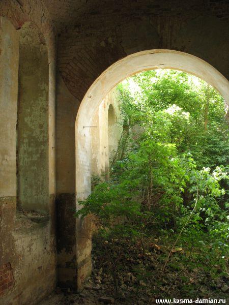 Молодые деревья и кустарники покрывают кучи мусора, оставшиеся от сводов.