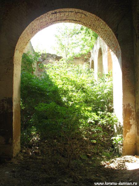 Растительность в трапезной части храма